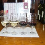 hunter-valley-wine-tasting-1