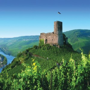 castle along the Rhine (2)